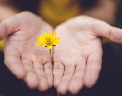 Controlar as expectativas é o jeito mais simples de perdoar